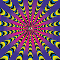 DP034P Warp factor 50 purple Products