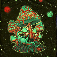 DP048 Cosmic shrooms Products