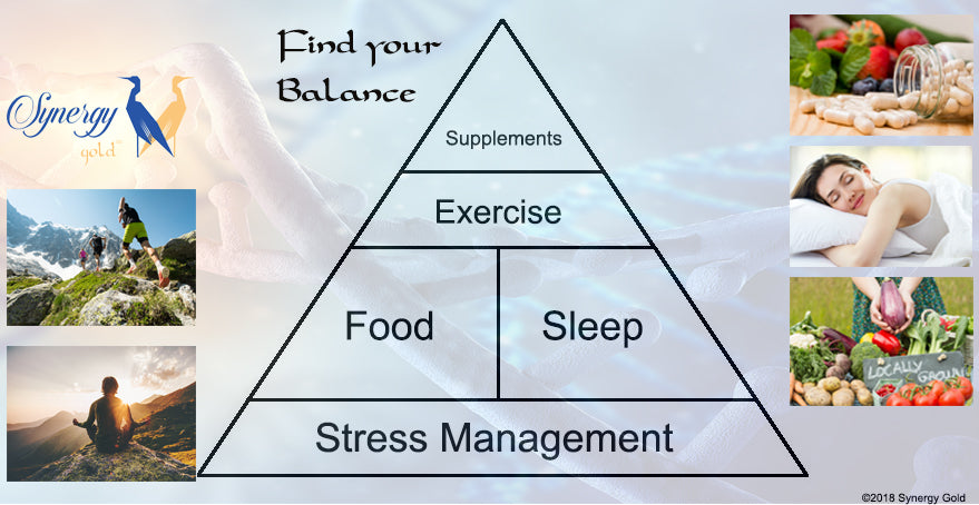 The Pyramid of Health