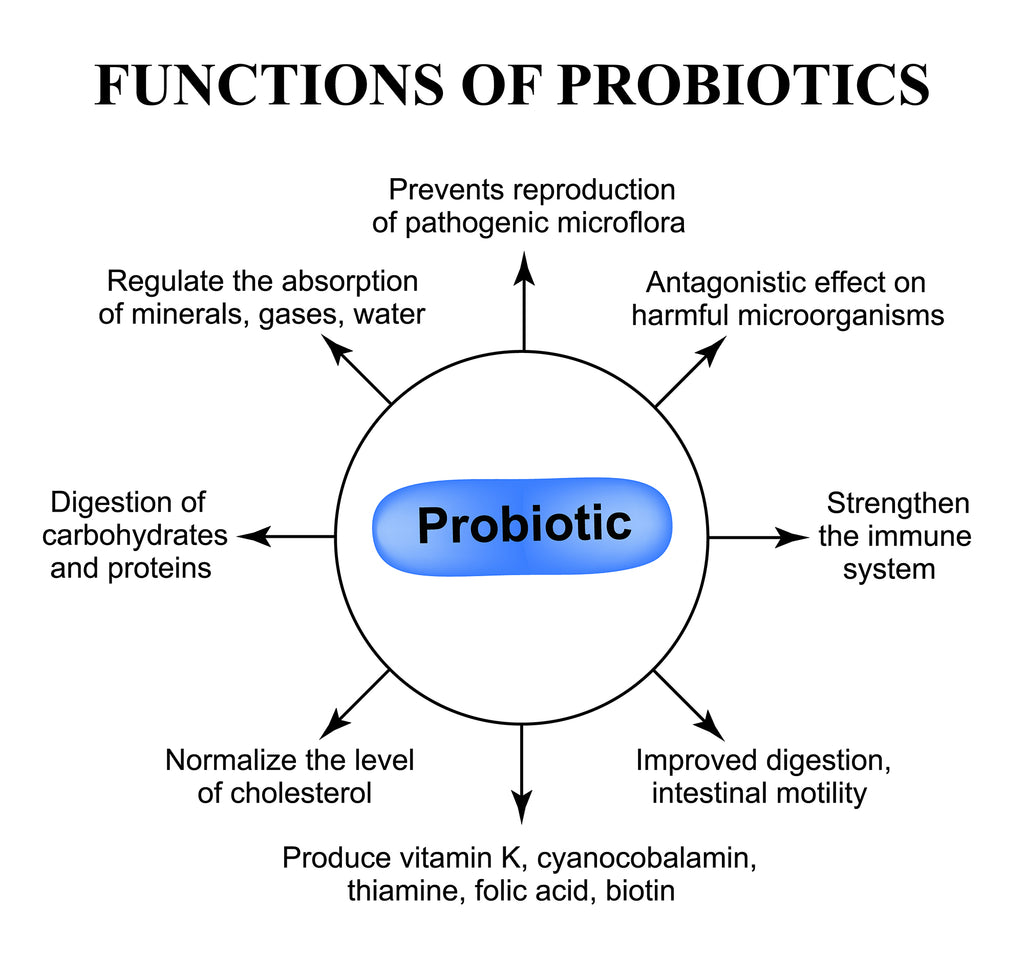 The Three Dollar Probiotic