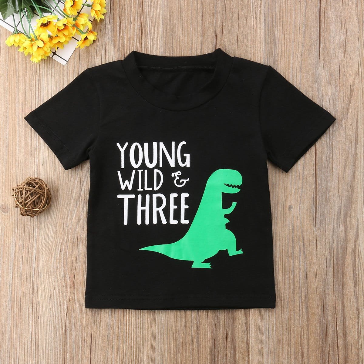 Kids Baby Girl Boy Dinosaur Tops T-shirts Bluse Clothes Summer Age 2 3 4 T - EM
