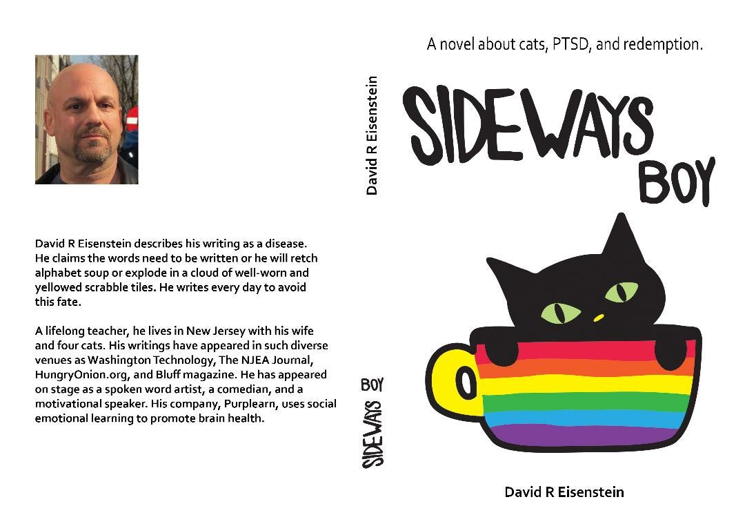 Sideways Boy by David Eisenstein