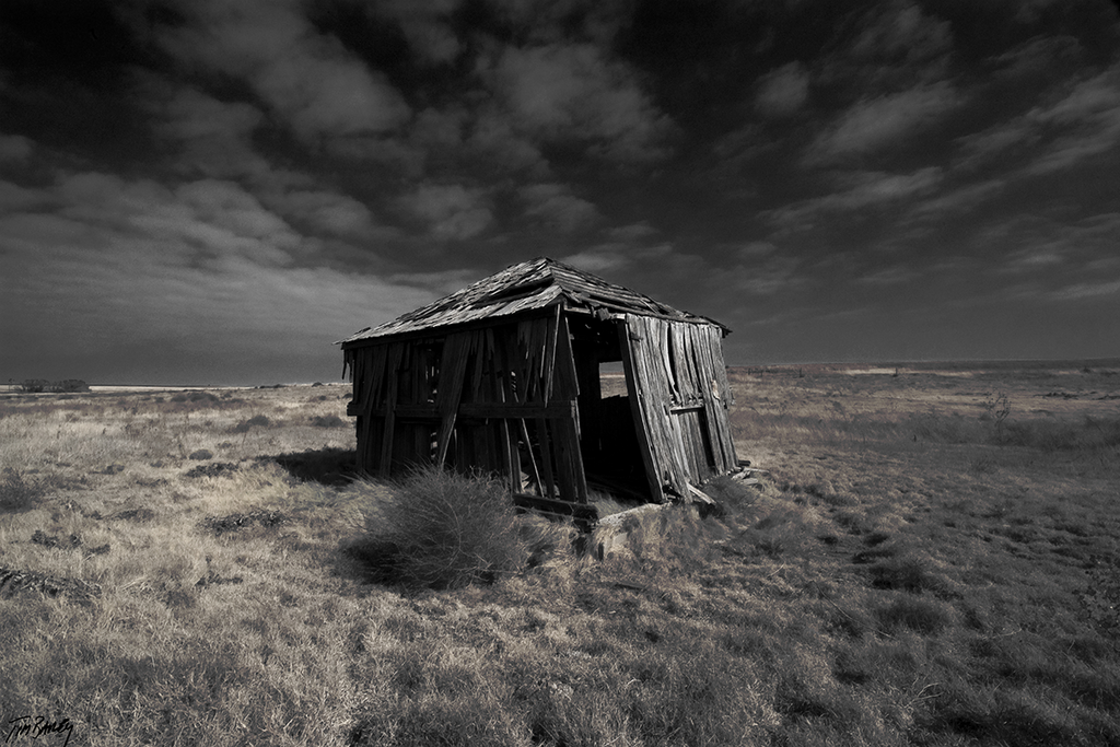 Gone With the Wind - abandoned rural Texas farmhouse photograph