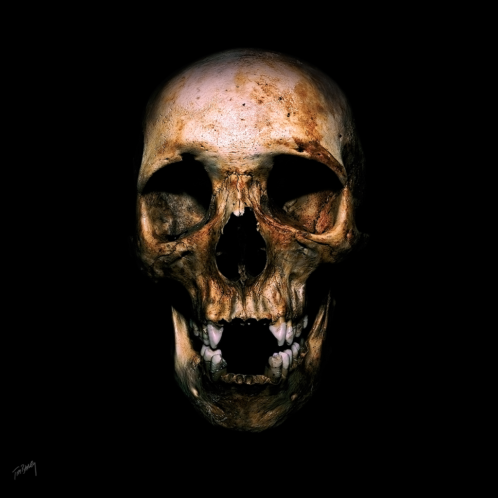 Skull of a Tibetan Youth - dark eerie square photograph