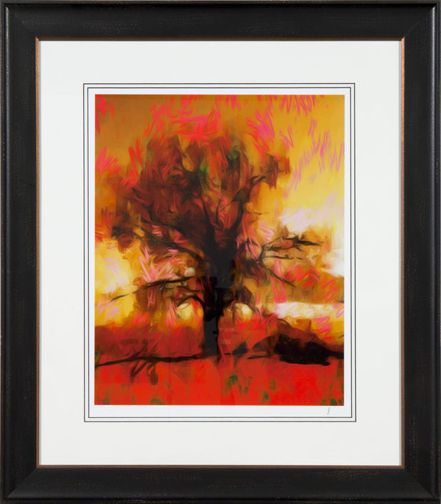 Evolution of a Sunset - Limited Edition Signed Prints