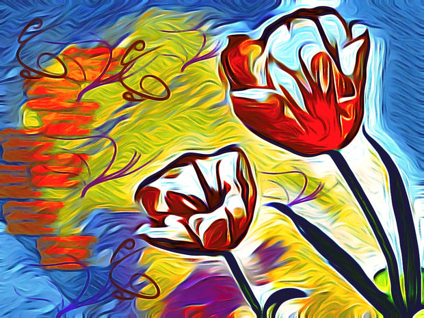 Tulip Fever - Limited Edition Signed Prints