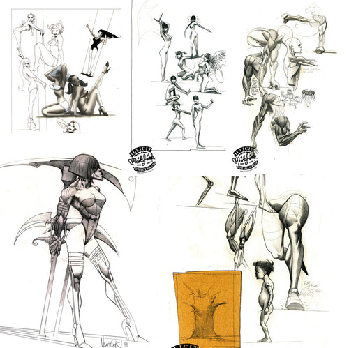 Martin Emond Poster set - Studies in Anatomy
