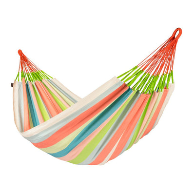 Family Size Colourful Hammock