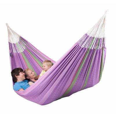 Family playing in hammock