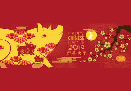 Year of the Pig, Chinese New Year