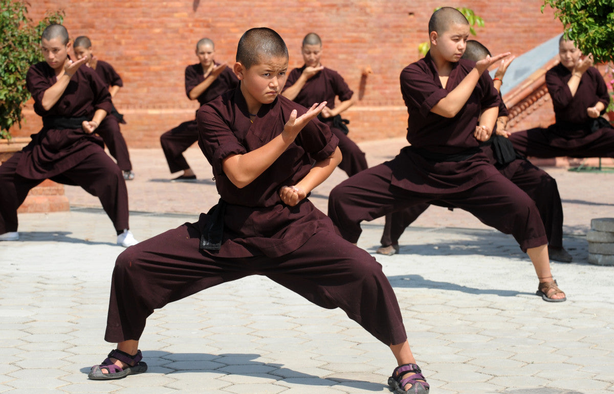 The Origins of Kung Fu