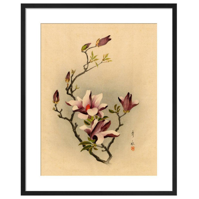 Chinese Painting Magnolia