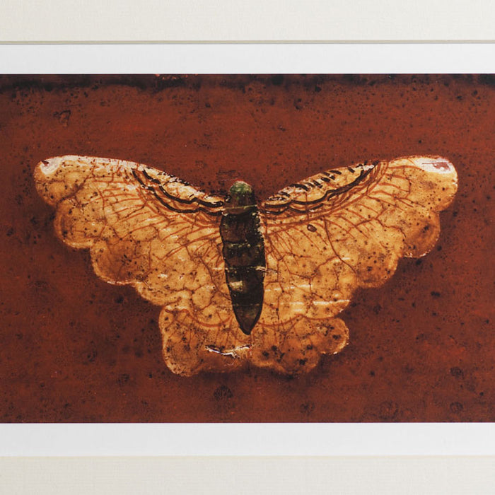 Limited Edition Print - 'Butterfly'