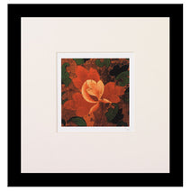 Limited Edition Print - 'Red Flower'