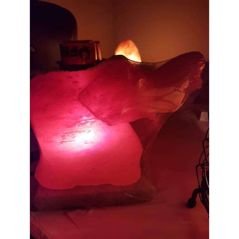 Carved Elephant Salt Lamp - Why So Salty