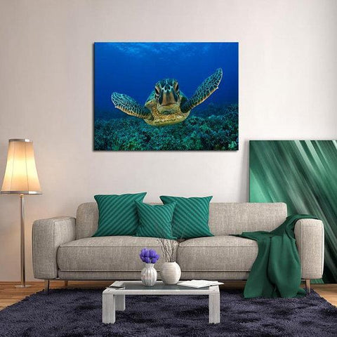 New Day Stock Store Canvas Paintings Medium / 1 Piece / No Frame Sea Turtle Love Multi Piece Canvas Set