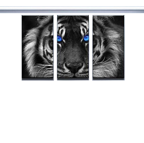 New Day Stock Store Canvas Paintings Medium / 3 Pieces / No Frame Blue Eyed Tiger Multi Panel Canvas Set