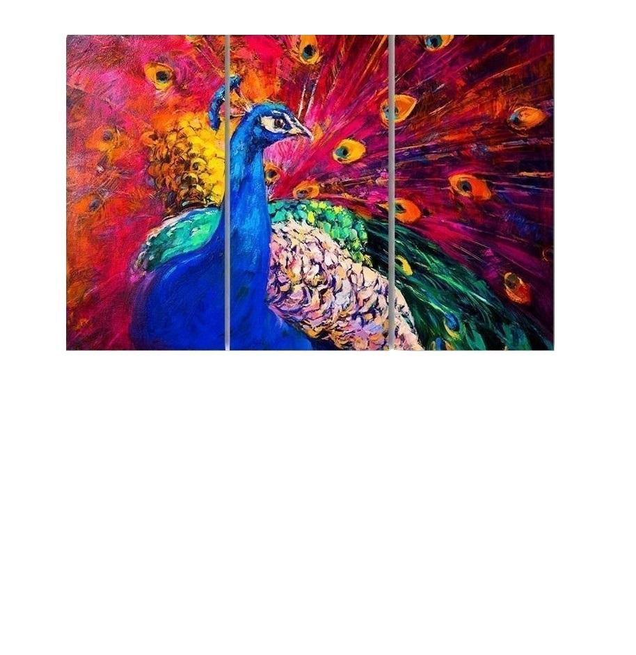 New Day Stock Store Canvas Paintings Medium / 3 Pieces / No Frame Multicolored Peacock Multi Piece Canvas Set