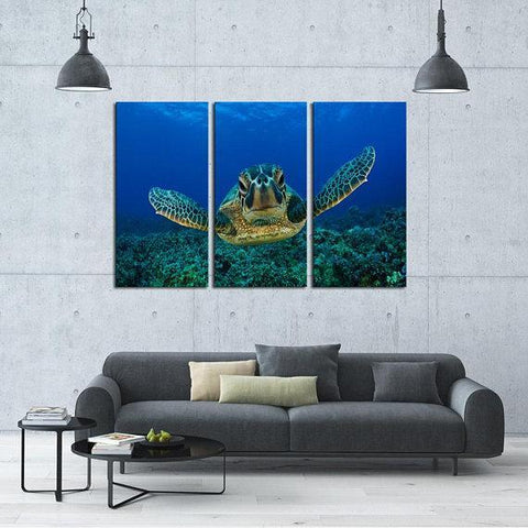 New Day Stock Store Canvas Paintings Medium / 3 Pieces / No Frame Sea Turtle Love Multi Piece Canvas Set
