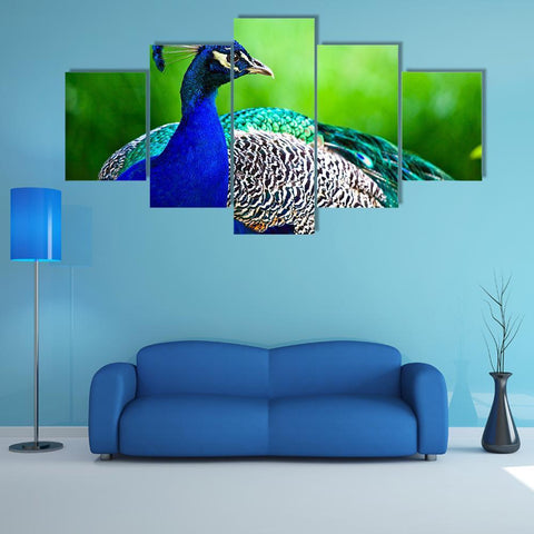 Image of New Day Stock Store Canvas Paintings Small / 5 Pieces / No Frame Close-Up Of Indian Peacock Multi Piece Canvas Set