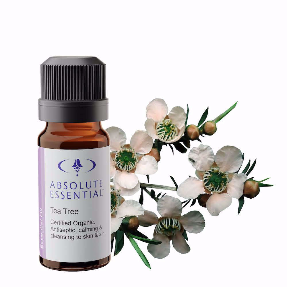 Tea Tree essential oil (organic) 10ml