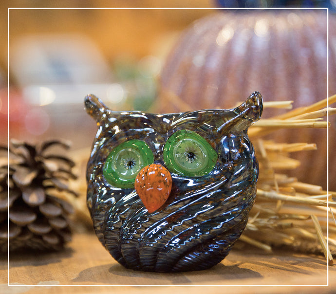 Owls and Acorns