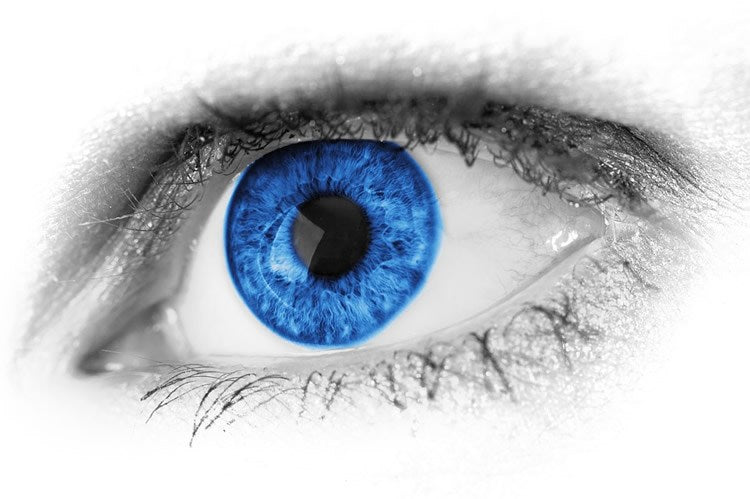 Blue Light, Alzheimers and Eye Disease.