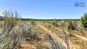 10 Acres | Lot 31 Tierra Verde Ranchettes  | Cibola County | New Mexico | $9,999 | Secure Today...