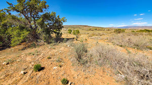 UNDER CONTRACT | 5.06 ACRES | CIBOLA COUNTY | GRANTS | NEW MEXICO | $15,000 | SECURE TODAY...