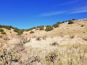 SOLD | 35.75 Acres | Las Animas County | Colorado | $12,499 | Secure Today....
