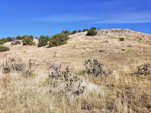 35.75 Acres | Las Animas County | Colorado | $12,499 | Secure Today....