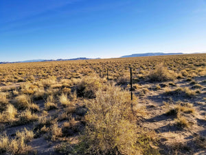 40 Acres | Alamosa County | Colorado | $8,499 | Secure Today....