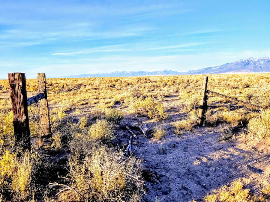 SOLD | 40 Acres | Alamosa County | Colorado | $8,499 | Secure Today....