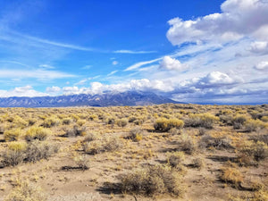 40 Acres | Alamosa County | Colorado | $9,850 | Secure Today....