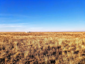35.1 Acres | Las Animas County | Colorado | $11,499 | Secure Today....