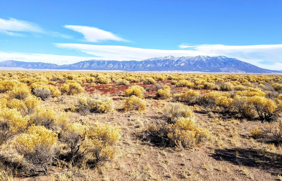 SOLD | 40 Acres | Alamosa County | Colorado | Cash: $12,499 | Secure today for...