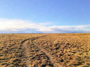 SOLD | 35.4 Acres | Las Animas County | Colorado | $7,000 | Secure Today....