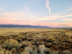 SOLD | 40 Acres | Saguache County | Colorado | $19,999 | Secure Today...