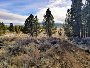 19.72 Acres | Klamath County | Oregon | $14,499 | Secure Today...