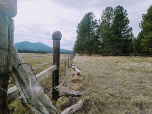 SOLD | 20 Acres | Klamath county | Oregon | $14,499 | Secure Today...