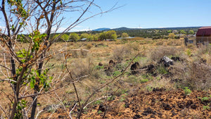 3 LOTS | ZUNI CANYON ROAD | GRANTS | NEW MEXICO | $5,300 EACH | SECURE TODAY…