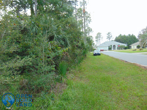 SOLD | 0.23 Acres | Flagler County | Florida | $19,900 | Secure Today...