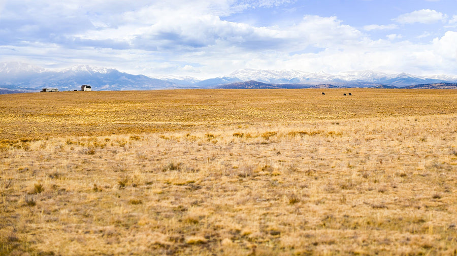 SOLD | 40 Acres | Park County | Colorado | $27,500 | Secure Today...