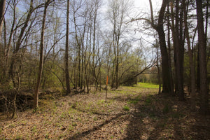 SOLD | 18.93 Acres | Newberry County | South Carolina | $80,000 | Secure Today...