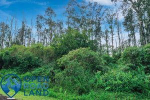 SOLD | 0.28 Acres | Hawaii County County | Hawaii | $11,000 | Secure Today...