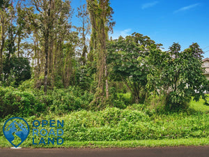 0.28 Acres | Hawaii County | Hawaii | $19,900 | Secure Today...