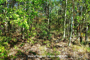 10.3 Acres | Jackson County | Mississippi | $84,997 | Secure Today....