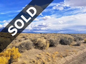 SOLD | 40 Acres | Alamosa County | Colorado | $9,850 | Secure Today....