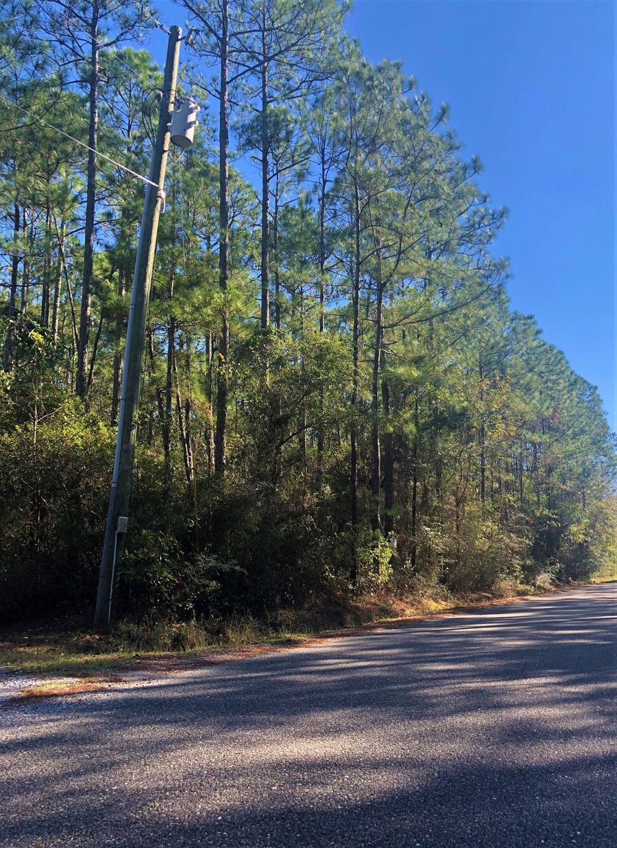 SOLD | 0.26 ACRE LOT | ASH ST | JACKSON COUNTY | MISSISSIPPI | $6,000 | SECURE TODAY...