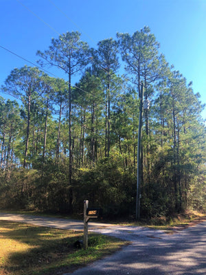 0.26 ACRE LOT | ASH ST | JACKSON COUNTY | MISSISSIPPI | $6,000 | SECURE TODAY...